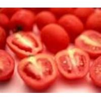 Cheap Tomato Extract (Lycopene) for sale