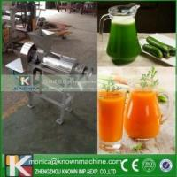 Cheap Screw Type Cashew Apple Juicer Machine/Cucumber juice Maker marketing plan for sale