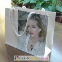 Cheap Paper Advertising Bag for sale