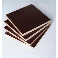 Cheap Film Faced Poplar Plywood For Cabinets , Decorative Plywood Sheets Anti Wear for sale