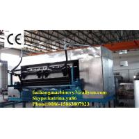 China Pulp Moulding Egg Tray Machine with CE Certificate on sale