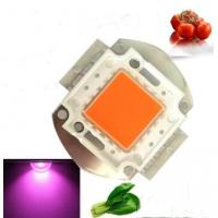 Buy cheap 30w Full Spectrum Growing LED Diode from wholesalers