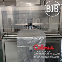 Cheap Fully-automatic BiB AdBlue Filling Machine Bag-in-Box Filler for sale