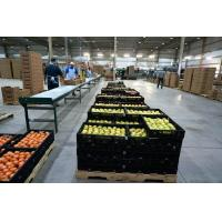 Buy cheap Farm Buildings And Structures For Supermarket -Vegetable And Fruit from wholesalers
