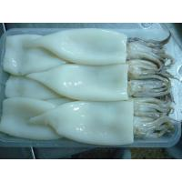 China Frozen Squid Tube and Tentacle / T&T(Latin name:Todaordes pacificus) on sale
