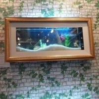 Cheap Wall Aquarium with Aluminum Board Drawing Frame Design, 8.4L Water Capacity for sale