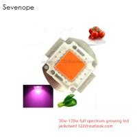 Cheap 120w Full Spectrum Growing LED Diode for sale