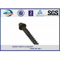 Cheap Post Anchor Screw Anchor Fence Spike Track Spike Railway Fasteners SGS / ISO9001 for sale