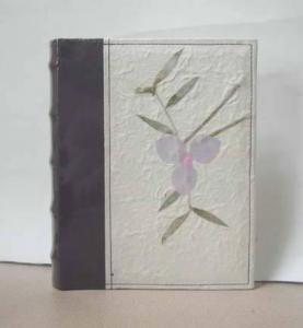 Cheap Photo Album with Glitter Cover,Wax Paper Album for sale