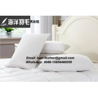 Cheap All Goose Feather Down Double Chamber Bed Pillow White Standard 1000g filled for sale