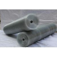 Cheap Hot dipped galvanized welded mesh/ black wire mesh panel/ PVC coated mesh wholesale