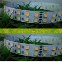 Cheap SMD 5050 120leds/m double-side PCB board led strip for sale
