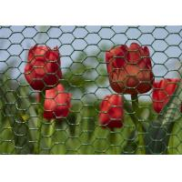 Environmental Plastic Coated Chicken Galvanized Wire Netting For Garden