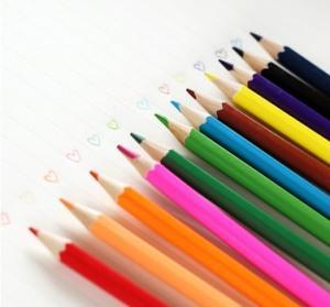 Quality Color Pencils 24 Different Colors P P Barrels Packaging wholesale