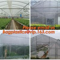 China 100% new LDPE green house plastic clear covering film,anti drip tomato Hydroponics agricultural plastic film on sale