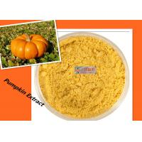 Cheap Dehydrated Pumpkin Vegetable Powder Reduce Blood Sugar / Blood Fat / Adiposity for sale