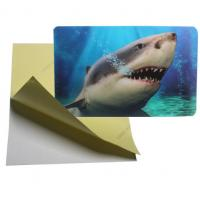 Cheap cheap price 3d lenticular sticker pp pet flip effect lenticular sticker printing with the adhesive on the backside for sale