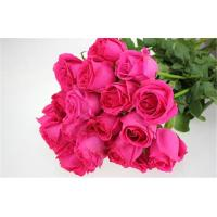 China China High quality fresh rose flower for wedding  red rose flowers for wholesale fresh cut flower Deep Honey Peach rose on sale
