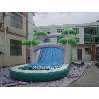Cheap Custom  Water Park Inflatable Water Slide With Pool For Children / Adults for sale