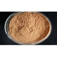 Natural chemical Fenugreek seed Extract natural extract from China market