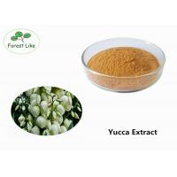 Cheap Natural Pure Yucca Plant Extract Powder 50% Sarsaponin for Odor Removing for sale