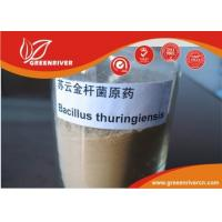 Cheap White powder Bacillus thuringiensisInsecticide for lepidopterous larvae control for sale