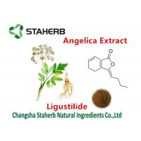 Cheap Ligustilide 1% Angelica Extract Pure Herbal Extracts For Female Health Care for sale