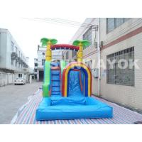 Residential Pool Water Slides Residential Pool Water