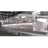 Cheap Microwave Vulcanizing Equipment for sale