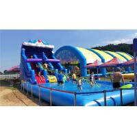 Cheap water slide with pool for sale