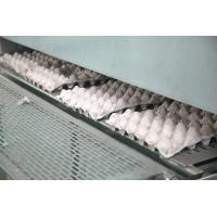 Cheap Pulp Egg / Apple Fruit Tray Moulding Machine With Drying System for sale