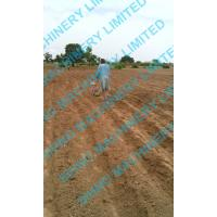 Cheap sihno corn seeder for sale
