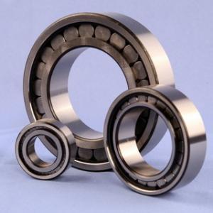 Cheap SL183005 (NCF3005) Full Roller Bearings for sale