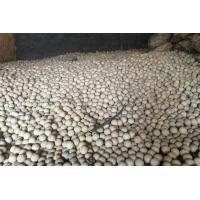 China Good Chemical Stability High Alumina Ball / Refractory Ceramic Balls on sale