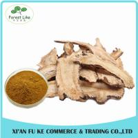 Cheap 100% Pure Natural Dong Quai Extract/Angelica Root Extract Powder for sale