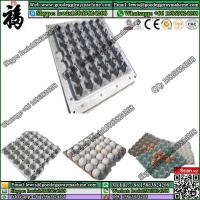 China Pulp Moulding Mould and Finish Product Egg Tray Mold on sale