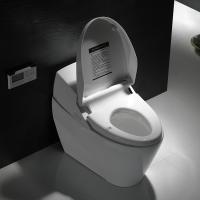 Cheap Ceramic intelligent toilet with electronic bidet toilet seat for sale