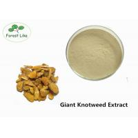 Cheap Medcine Ingredients Giant Knotweed Extract with 90% Polydatin White Powder for sale
