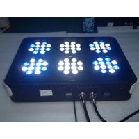 Cheap Apollo 6 LED Aquarium Light for sale