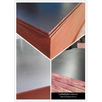 Cheap Construction Shuttering Plywood/18mm Film Faced Plywood /Waterproof Filmed Plywood Board for sale
