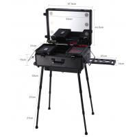 Cheap Hot salling in USA market ABS panel makeup case with handle lights and mirror produced by professional manufacturer for sale