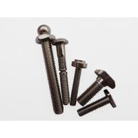 Cheap Ss 304 316 Non Standard Screws , Non Standard Nuts Special As Drawings For Construction for sale