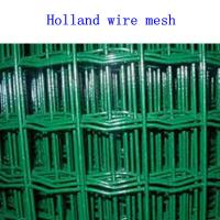 Cheap Holland wire mesh for sale