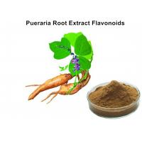 Cheap Pueraria Natural Plant Extracts 40% Flavonoids for Hangover breast enhancement / postponed female menopause for sale