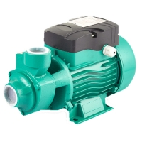 China Best Price 1 Inch 220 Volt Qb Qb60 0.5 Hp 0.75hp 1hp Rate Domestic Garden Electric Motor Vortex Water Pump For House on sale