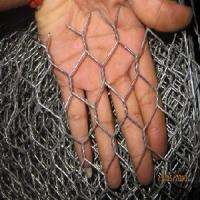 Cheap Galvanized Hexagonal Wire Netting (HYLD-002) for sale