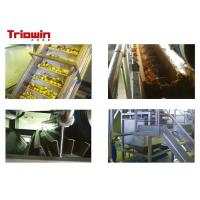 China Industrial Fresh Apple Processing Line , Fruit Processing Machine Aseptic Bag Package on sale
