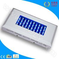 Cheap 60W LED Aquarium Light for Coral Reef for sale