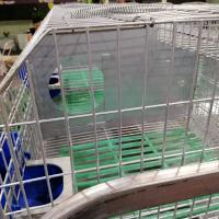 Cheap commercial female rabbit cage automatic rabbit cage mother rabbit cage for sale for sale