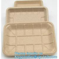 China Dishes Plates Eco Friendly Dinnerware Blister Packaging Resturant Serving Tray on sale
